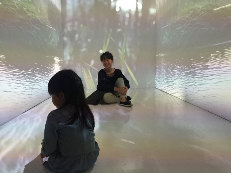 installation with 4 projections and sound at Currents New Media Festival 2018, El Museo Culturel, Santa Fe, NM and National Design Centre,Singapore 2017
