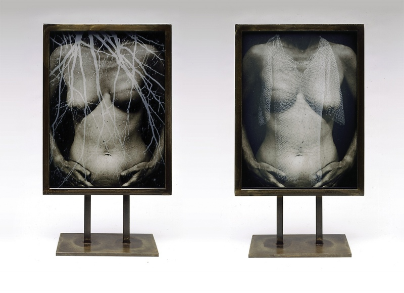 """2.Torso duraclear transparency sandwiched between two sandblasted photo images on glass, in steel standing frame 17""""x10""""x1"""" front and back"""