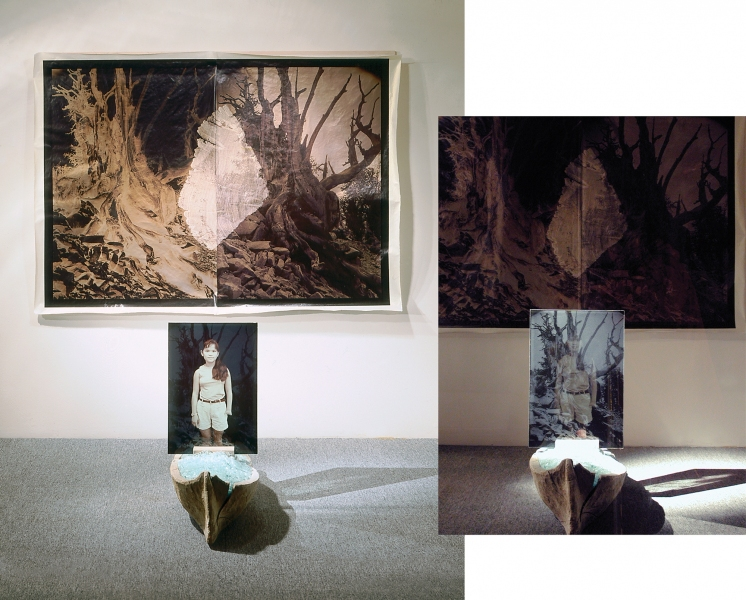 Anni with Bristlecone Pine, in nineteenth-century dugout, and Millennial Forest, LewEllen Contemporary Gallery window